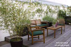 """The open green house"". Roof terrace in Torino. Italy. Designed by Gabriella Mazzola (ilsolenelgiardino.it)"