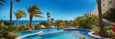 Abora Continental by Lopesan Hotels, the place you need for your family holiday in Playa del Inglés. Last Minute, Hotel Pool, At The Hotel, Photo Galleries, Gallery, Places, Outdoor Decor, Holiday, Pictures