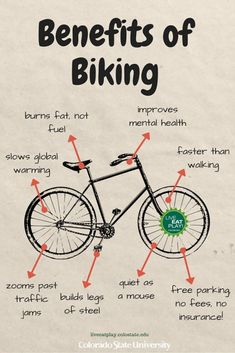 June is Colorado Bike Month! Whether you're commuting or getting out for a fun ride, plan your best (and safest) biking route anywhere in Colorado using these online maps! Mountain Biking Quotes, Folding Mountain Bike, Bike Quotes, Cycling Tips, Cycling Workout, Cycling Art, Bicycle Workout, Road Cycling, Urban Bike