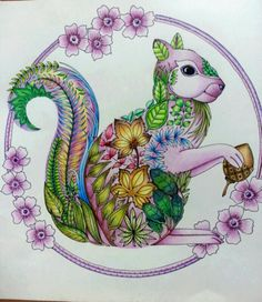 Enchanted Forest Johanna BasfordAdult ColoringColoring BooksColor Pencil DrawingsEnchantedColoring BookColouring PagesSquirrelEnchanted Maryland