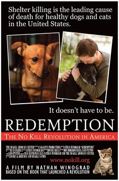 Win a copy of this powerful film that is changing the game. Discover how close we are to a no kill nation for shelter animals. http://barkandswagger.com/achieving-no-kill-nation-happening-cutting-edge-movement-giveaway
