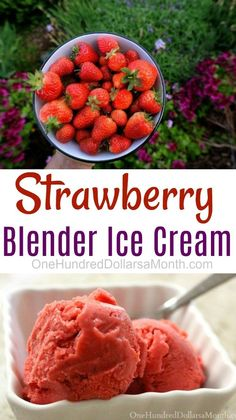 Sometimes I want ice cream and I want ice cream now! This is practically instant ice cream. So when your poor freezer is bare and ice cream free, this recipe will come to your rescue! Ingredients 3 Cups {about 24 oz} frozen strawberries cup sugar Blender Ice Cream, Keto Ice Cream, Healthy Ice Cream, Make Ice Cream, Homemade Ice Cream, Ice Cream Recipes, Vitamix Ice Cream, Lactose Free Ice Cream, Homemade Sorbet
