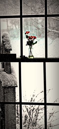 snow outside the window
