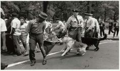 Policemen Use Police Dogs During Civil Rights Demonstrations, Birmingham Protests.   Source: Smithsonian Museum, Photographer: Charles Moore, http://www.si.edu/Termsofuse