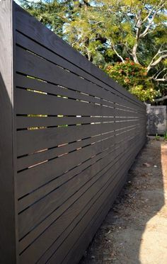 pleaching trees in line against contemporary fence - Google Search