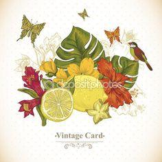 Старинные открытки тропические фрукты, цветы, бабочки и птицы — стоковая иллюстрация #73057863