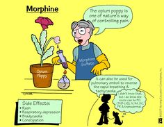 Morphine Morphine is an opioid pain medication used in treatment of moderate to severe pain.