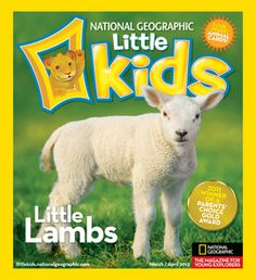 great website for kids/online