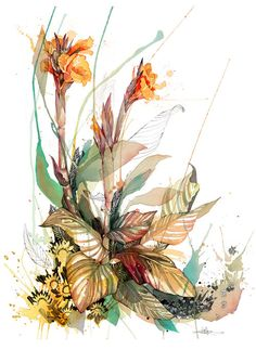 Official Rachel Walker limited edition prints of colourful, splashy, watercolour and ink creatures. Illustrations, Illustration Art, Rachel Walker, Ballet Posters, Street Art, Canna Lily, Ink Doodles, Nz Art, Art Sketchbook