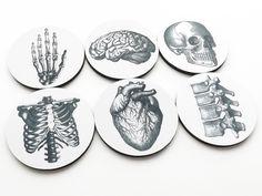 Cool set of 6 anatomy coasters