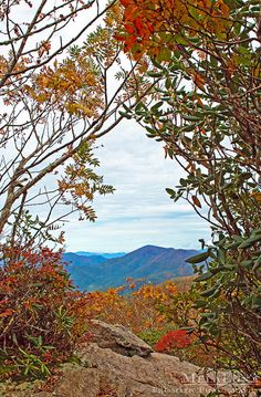 Fall Foliage In The Mountains Asheville