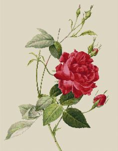 Flower Counted Cross Stitch Pattern Rose by Pierre by SimpleSmart