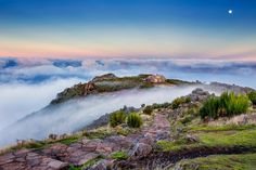 Escale #croisière. Découvrez l'île de Madère - Portugal. Photo de M. Alajeel.