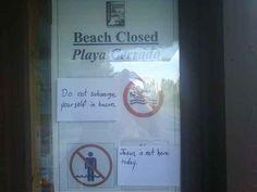 This snarky beach-goer.