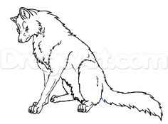 how to draw a wolf sitting step 6