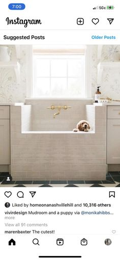 (paid link) With a pet grooming tub, pet hair won't clog your bathroom drain, and your pet ... Bathing your dog in special dog Bathing station, with steps and high quality tub. #dogbathingstation Bathroom Drain, Bathtub, Dog Bathing Station, Pet Supply Stores, Pet Grooming, Pet Supplies, Sweet Home, Pets, House