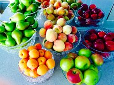 Another advantage about eating RAW Plant-Based Foods .... You can eat as much as you want in it's natural state. You never have to count calories! These Apples Peaches and Pears are from a Client's yard ---- Free Food .... and the Plums and Apricots are from my Local Farmers Market! See a Fruit Tree, ask the Homeowner if you can pick some Fruit .... I'm sure they will be happy to share! Healthy Snacks, Healthy Eating, Healthy Recipes, Calorie Intake, Eating Raw, Calorie Counting, Pears, Fruit Trees, Plant Based Recipes