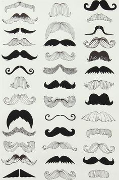 "Alexander Henry Fabric ""Where's My Stache"""