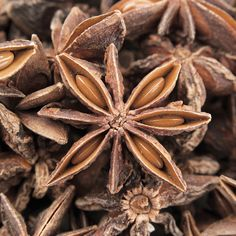 Aromatic anise is paired with musky patchouli in Compagnie de Provence's Version Originale range. Provence, Get Thin, Stuffed Mushrooms, Vegetables, Range, Natural, Lose Weight At Home, Fit Bodies, Lose Belly