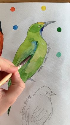 The Golden Fronted Leafbird By Polina Bright Using Polina Bright Synthetic Brush N 1 Cruelty Free Amp Vegan Watercolor Painting Techniques, Watercolour Tutorials, Painting Lessons, Painting & Drawing, Watercolor Paintings, Watercolor Illustration Tutorial, Art Painting Tools, Watercolour Drawings, Drawing Hair