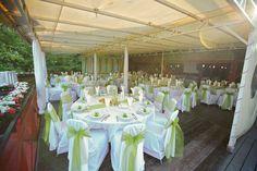 Zöld esküvői dekoráció székszoknyával - Green wedding decoration with chaircover