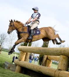 I'm really missing Cross Country! Cute Horses, Beautiful Horses, Cross County, Cross Country Jumps, English Riding, Show Jumping, Show Horses, Horseback Riding, Horse Riding