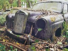abandoned Mercedes Benz, like the one driven by Miriam Duchesne, Orphenia and Philo's mother.