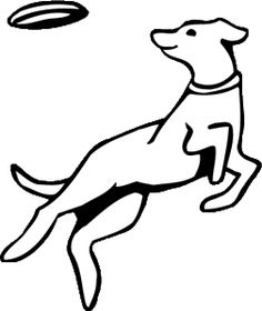 yellow lab coloring pages - labrador coloring page yellow lab chocolate lab