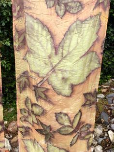 natural dying and Eco printing sycamore leaves and madder