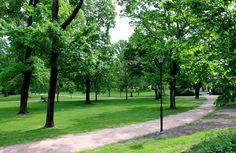 Kaivopuiston käytäväverkosto oli polveileva ja kaarteleva, risteyskohtiin istutettiin puu- ja pensasryhmiä [Sakke Somerma]