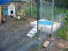 Jacuzzi-style duck pond. Drain in bottom of kiddie pool. Attached hose drains dirty water away.
