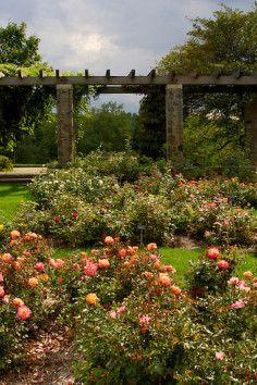 Boerner Botanical Gardens, Milwaukee County's Living Museum.