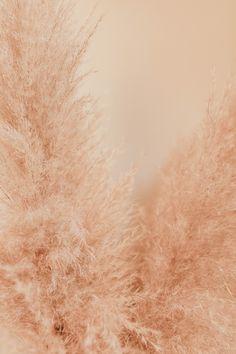 Photo by Liana Mikah on Unsplash Iphone Wallpaper For Desktop, Locked Wallpaper, Wallpaper Backgrounds, Boys Wallpaper, Screen Wallpaper, Wallpaper Quotes, Aesthetic Backgrounds, Aesthetic Iphone Wallpaper, Aesthetic Wallpapers