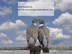 Liefdesliedjes zeggen je zoveel meer als er van je gehouden wordt...