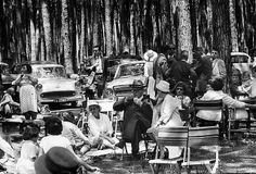 Tokai forest gathering    c1962. by Etiennedup, via Flickr Old Photos, Vintage Photos, Out Of Africa, Places Of Interest, Old Buildings, African History, Countries Of The World, Cape Town, Historical Photos