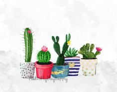 Cactus printablecactus printwatercolor by makesmydayhappy on etsy k ve keyifli haliyle country bir dekor Art Watercolor, Watercolor Cactus, Cactus Wall Art, Cactus Cactus, Cactus Decor, Cacti, Quality Photo Prints, Botanical Decor, Botanical Gardens