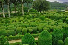 Топиари Везака. Сады Маркессак в провинциальном городке Везак, Франция.