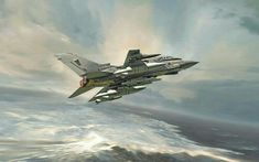Tornado by PetervanStigt on DeviantArt Military Art, Military Uniforms, Airplane Art, Tornados, Aviation Art, Military Aircraft, Fighter Jets, Hornet, Around The Worlds