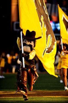 Pistol Pete Football Cheerleaders, Cheerleading, Pistol Pete, Wyoming Cowboys, Cowboy Art, My Happy Place, Squad, Law, University