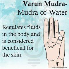 Varun Mudra Mudra of Water Regulates fluids in the body, beneficial for the skin Chakra Meditation, Kundalini Yoga, Pranayama, Kundalini Mantra, Yoga Mantras, Yoga Quotes, Quotes Quotes, Meditation Exercises, Qi Gong