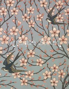 Walter Crane pour Jeffrey & Co, (Almond Blossom and Swallow) papier peint 1878 Walter Crane, Background Paper, Antique Background, Of Wallpaper, Designer Wallpaper, Pattern Wallpaper, Motifs Art Nouveau, Illustration Art Nouveau, Groomsmen