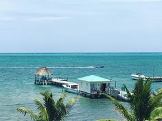 This is paradise! The most beautiful waters! #paradise #belize #carribean