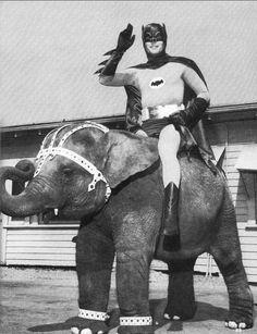 The newest batmobile.