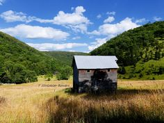 Pendleton County WV. July 2016 All Rights Reserved - Teena Bowers Photography