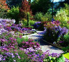 Picton Garden in Herefordshire - http://www.greatbritishgardens.co.uk/england/item/the-picton-garden.html