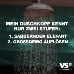Visual Statements®️ Mein Duschkopf kennt nur zwei Stufen: 1. Sabbernder Elefant 2. Grossdemo auflösen Sprüche / Zitate / Quotes / Spaß / lustig / witzig / Fun / Lachen / Humor