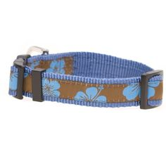 Swim time doesn't have to mean no collar anymore. These swimmable collars, by Hamish McBeth, are fashionable, bright and won't be damaged by the salty sea. The fixtures are rustproof, and the collar itself is made of sturdy polyester webbing, designed not to fray. Take the beach dogs by storm with these modern, funky designs, or swap out this collar when going on walks in the rain, visiting lakes or creeks too. Blue hibiscus flowers on brown background. #dogcollar #collar