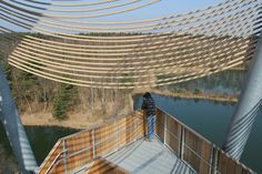 mamu architects lommel viewing tower designboom