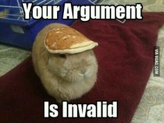 Pancake on my head. Therefore. No matter what. Your argument is invalid.