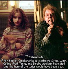 Crookshanks, Dobby, Hero, Let It Be, Couple Photos, Cats, Harry Potter, Fictional Characters, Captions